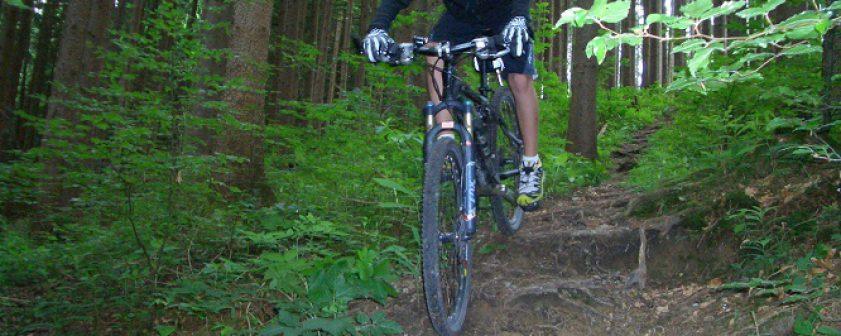 Fortgeschrittenen-Kurs-Mountainbike (1)